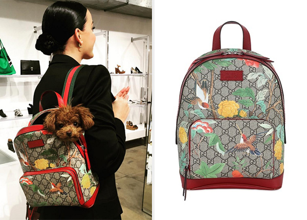 adf6535f395b Katy Perry's Gucci Blooms GG Supreme Backpack – CelebrityFashionista.com