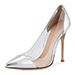 Gianvito Rossi Plexi Metallic Illusion Silver Pump